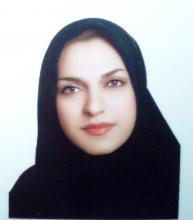 سیده سارا امینی- مدیر ترجمه پژوهان اروند